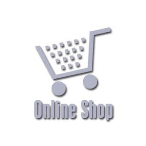 Online Shop Terms and Conditions